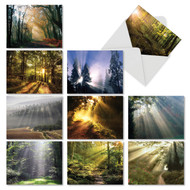 AM1735SM - Shining Through: Mini Assorted Set of 10 Cards