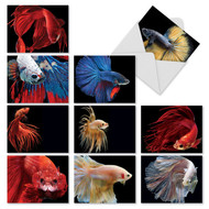 M1630 - Fancy Fins: Assorted Set of 10 Cards