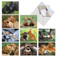 M6594TY - Animal Smackers: Mixed Set of 10 Cards
