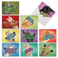 M6599MY - Cat Miss You This Much: Mixed Set of 10 Cards
