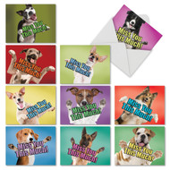 M6600MY - Dog Miss You This Much: Assorted Set of 10 Cards