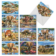 M6640TY - Savanna Selfies: Mixed Set of 10 Cards