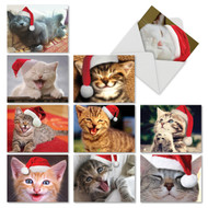 M6485XS - Christmas Smitten Kittens: Mixed Set of 10 Cards