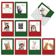 M6583XS - Christmas Cats & Doodles: Mixed Set of 10 Cards