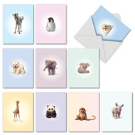 M6726TY - Zoo Babies: Assorted Set of 10 Cards