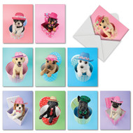 M2955BD - Hat Dogs: Assorted Set of 10 Cards