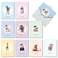 M6726XT - Christmas Zoo Babies: Assorted Set of 10 Cards