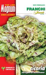 RADICCHIO (Cicoria) variegata di Castelfranco Magnum 28g