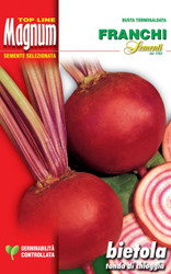 BEETROOT (Bietola da orto) tonda di Chioggia MAGNUM 30 grams