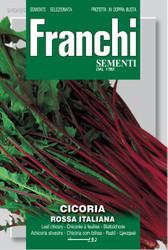 CHICORY (Cicoria) rossa italiana