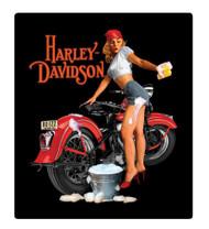 Harley-Davidson® Wash Babe Tin Metal Sign, 13 W x 15 H Inch 2010371 - Wisconsin Harley-Davidson
