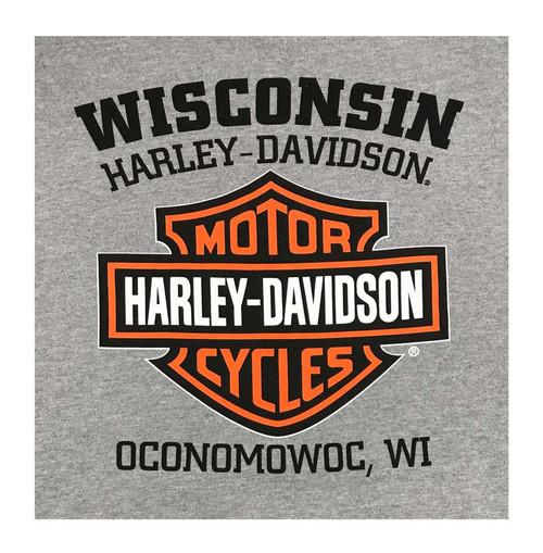 harley-davidson® men's hooded sweatshirt, willie g skull, gray