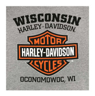 Harley-Davidson® Men's Hooded Sweatshirt, Willie G Skull, Gray Hoodie 30296654 - Wisconsin Harley-Davidson