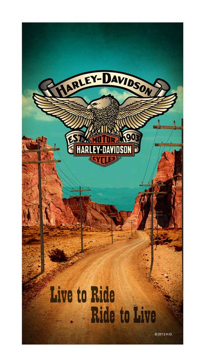 Harley-Davidson® Desert Road Bar & Shield Eagle Beach Towel, 30 x 60 inch, 11896