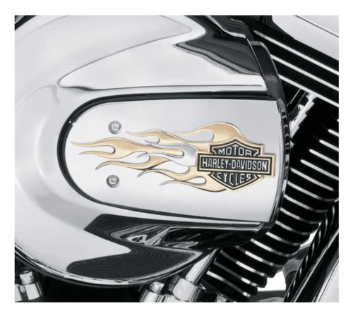 Harley-Davidson® B&S Gold Flames Air Cleaner Trim, Fits Softail & Etc. 61300222
