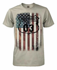 Harley-Davidson® Men's 1903 American Flag Short Sleeve T-Shirt, Ice Gray - Wisconsin Harley-Davidson