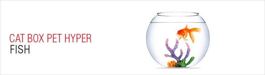 fish-catergory.jpg