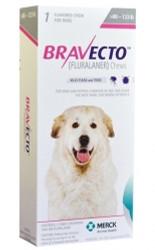 Bravecto XL Dog 40-56kg