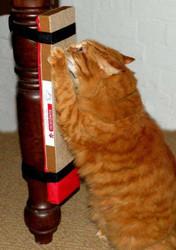 Kunduchi Super Catnip Scratchpost