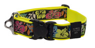Rogz Fancy Dress Extra Extra Large 40mm Special Agent Dog Collar, Dayglo Floral Design(HB04-BU)