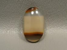Agate Cabochon Brazilian Piranha Designer Gemstone Small Oval #6