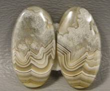 Crazy Lace Agate Matched Pair Cabochons #5