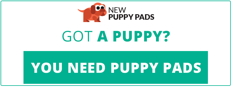 cta-newpuppypads-puppymistakes.png