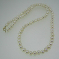 10k Yellow Gold White Pearl Necklace