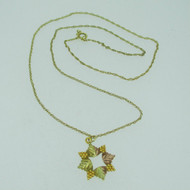 10k Black Hills Gold Star Shaped Pendant and Chain