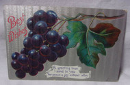 Best Wishes 1910 Antique Postcard w/ Grapes on Vine