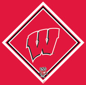 University of Wisconsin Cleaning Cloth