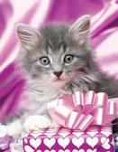 Kitten 240 21c 3 Artist Micro Fiber Cleaning Cloth