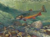 Fish Artist 240-08b-3 Micro Fiber Cleaning Cloth