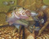 Fish Artist 240-08b-5 Micro Fiber Cleaning Cloth