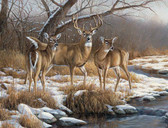 Deer Hunting Theme 240-34a-6 Artist Micro Fiber Cleaning Cloth